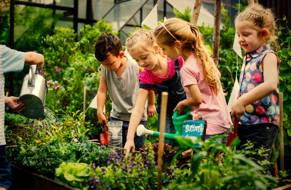 Het positieve effect van een agrarische omgeving op de ontwikkeling van je kind